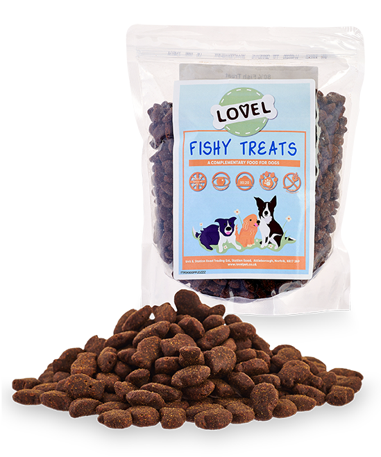 Fishy Treats 500g